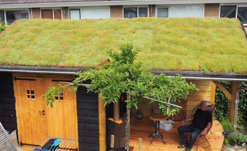 groen dak aanleg glooiend dak