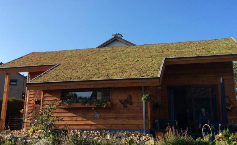 groen dak aanleg hellend dak
