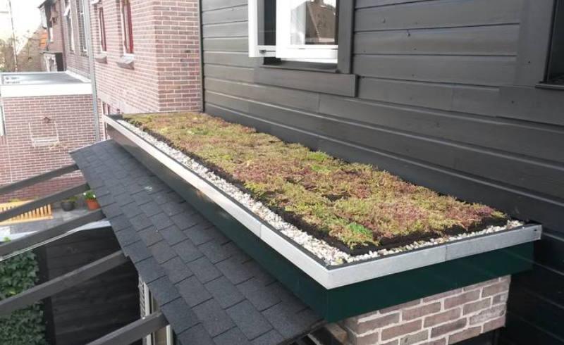 groen dak aanleg plat dak